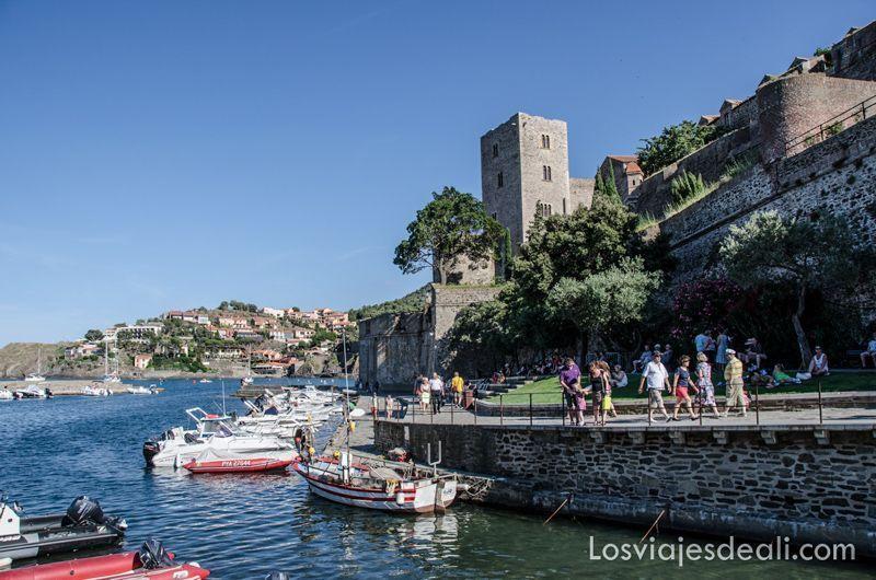 puerto de Collioure y machado