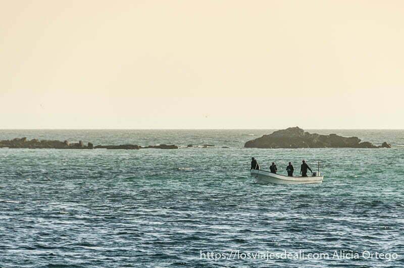 barca con cuatro hombres volviendo a la playa al atardecer en masirah