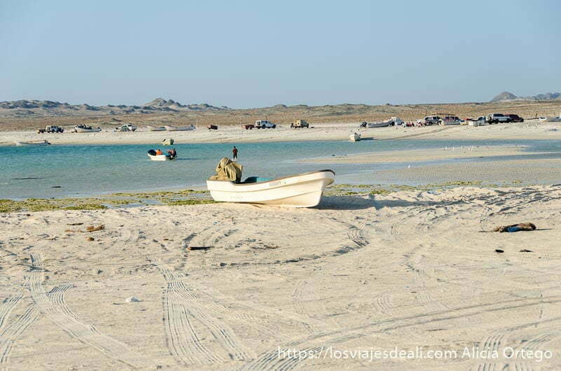 barca en la arena de una playa de masirah