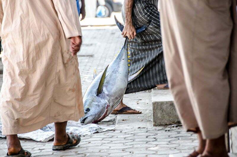 un hombre arrastra por la cola un atún grande en el mercado de pescado en omán