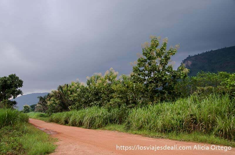 pista de tierra roja con vegetación y nubes de tormenta natitingou