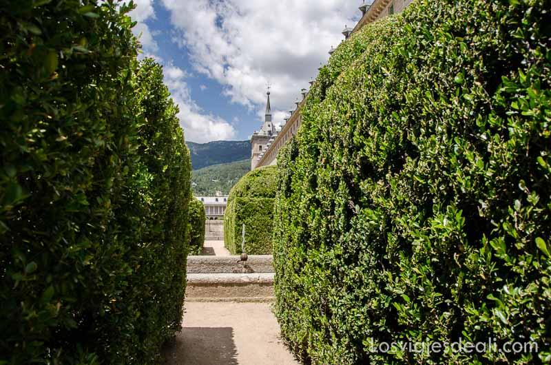 vista del monasterio de el escorial entre arbustos del jardín un fin de semana en la sierra de madrid