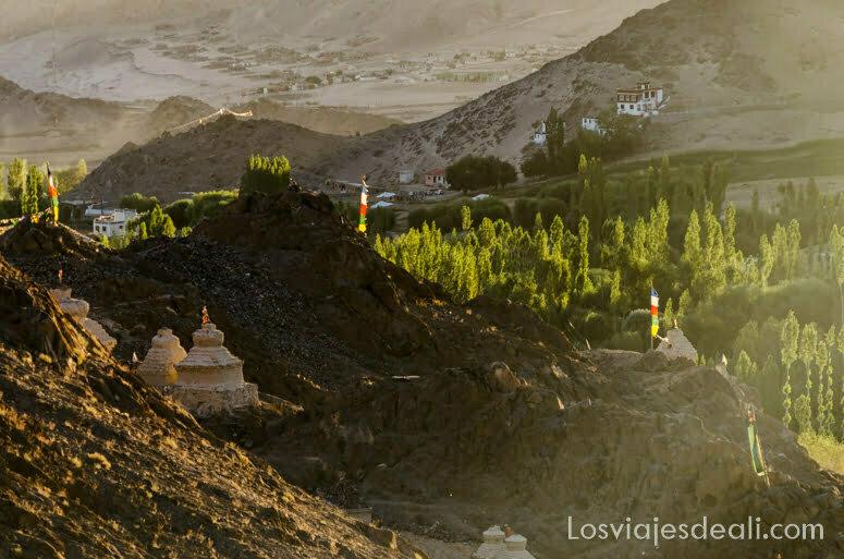 puesta de sol con chopos y montañas trekking cerca de leh