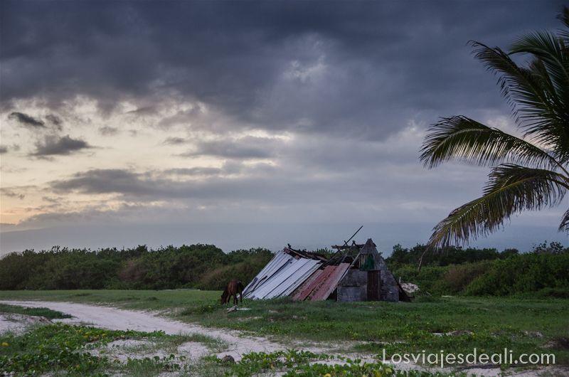 vivir en las islas galápagos isabela