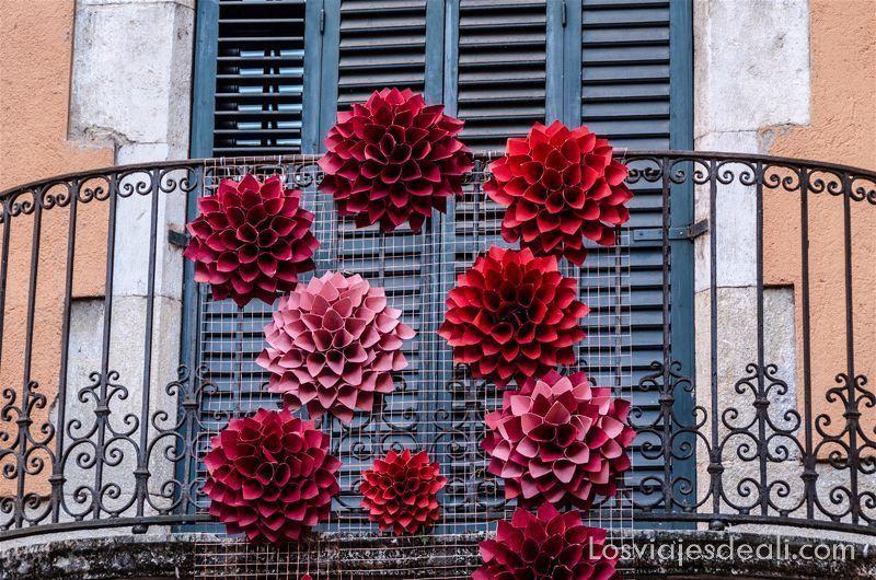flores en el balcón en temps de flors