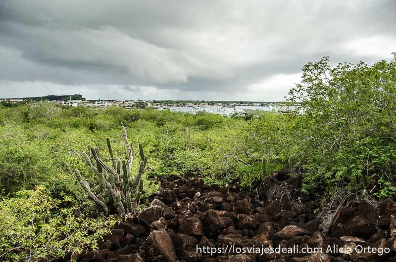 panorama muy verde desde el cerro en isla san cristóbal galápagos