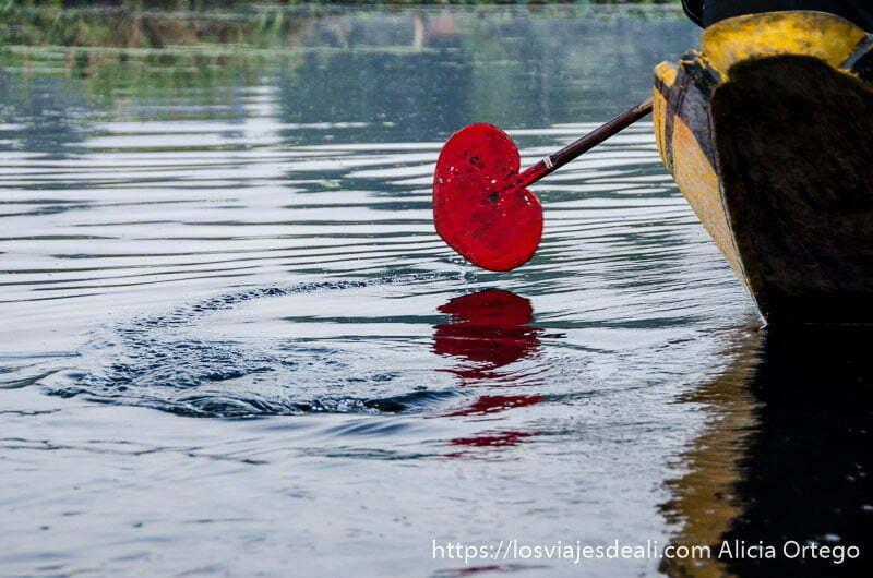 remo de color rojo en forma de corazón en el lago dal srinagar