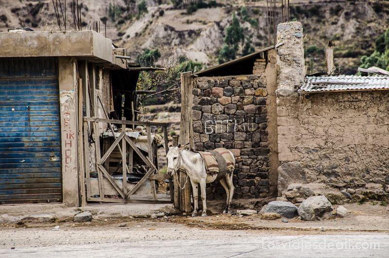 los pueblos del valle del colca Maca