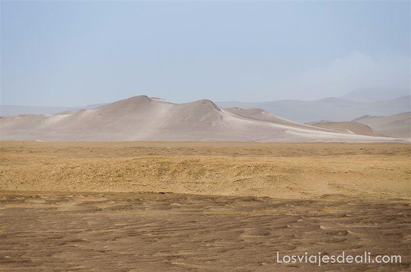 reserva nacional de paracas peru