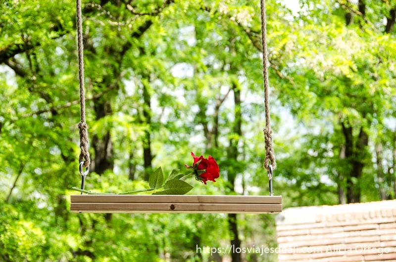 una rosa roja en un columpio de madera temps de flors