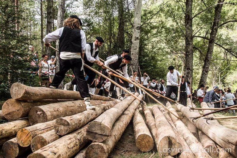 gancheros del Alto Tajo empujando troncos