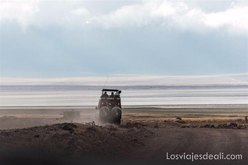 cráter de Ngorongoro safari