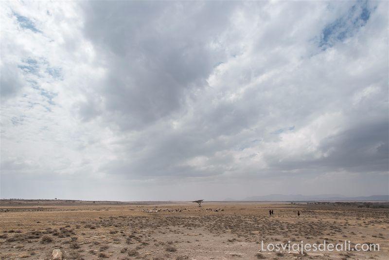 imagenes y sensaciones de Kenia y Tanzania Serengeti