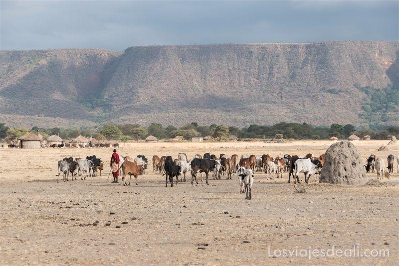 imagenes y sensaciones de Kenia y Tanzania masai