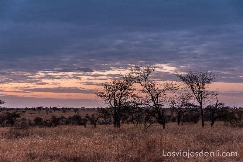 visita al parque nacional Serengueti atardecer