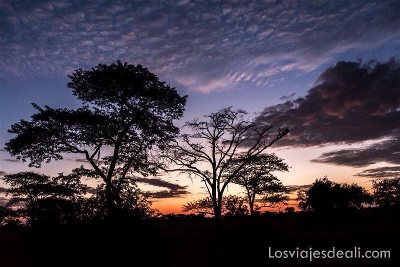 visita al parque nacional Serengueti amanecer