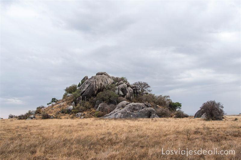 visita al parque nacional Serengueti koppi