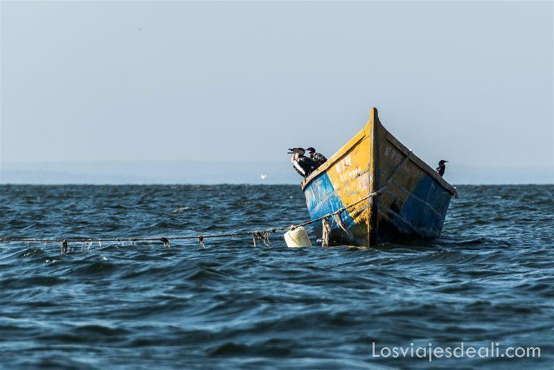 LAGO VICTORIA barca con cormoranes