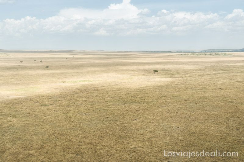 dos días en masai mara paisaje