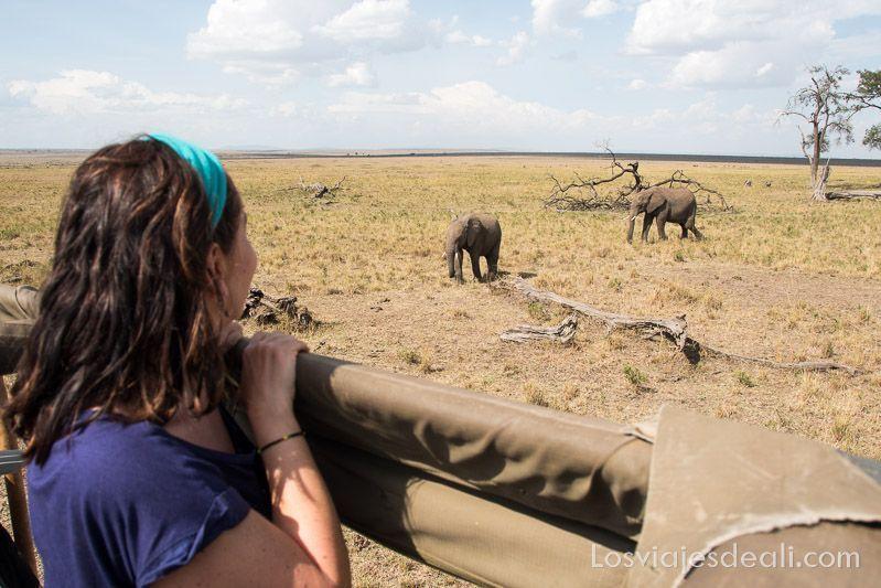dos días en masai mara viendo elefantes