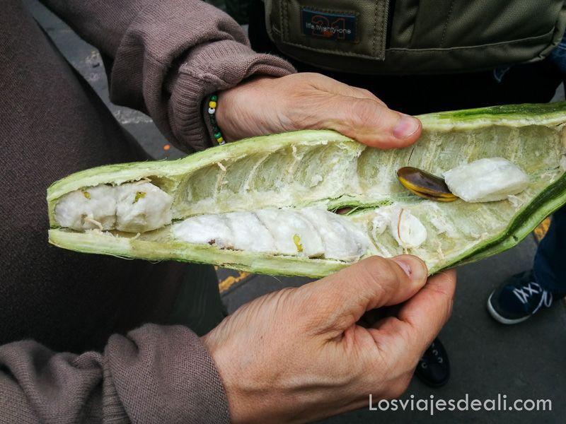 fruta de Peru