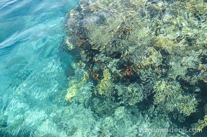 mar de aqaba y mar muerto