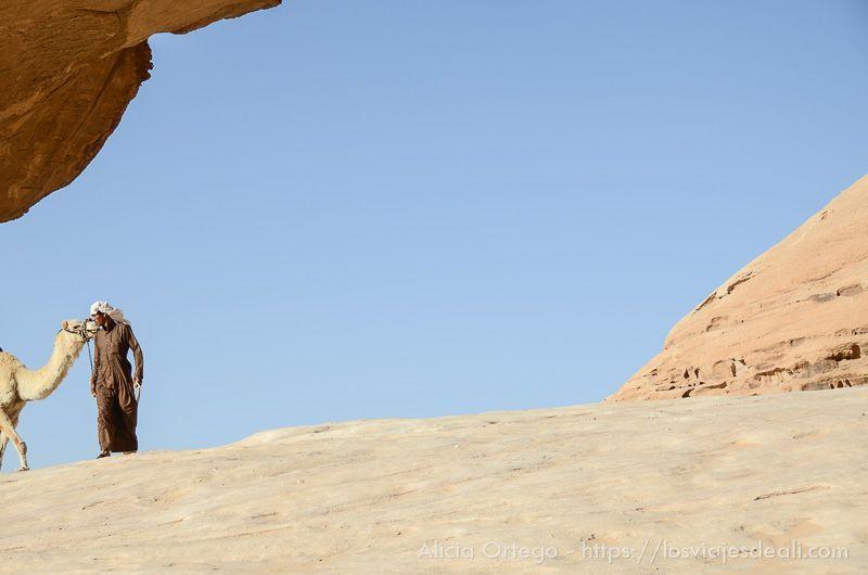 desierto de wadi rum beduino y camello
