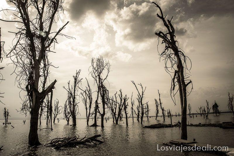 paisaje del Lago Naivasha consejos básicos para mejorar tus fotografias de viaje