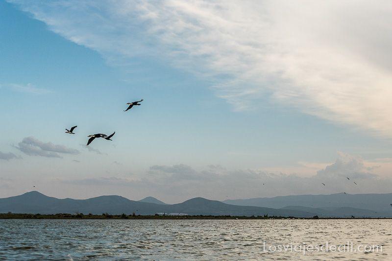 atardecer en el Lago Naivasha