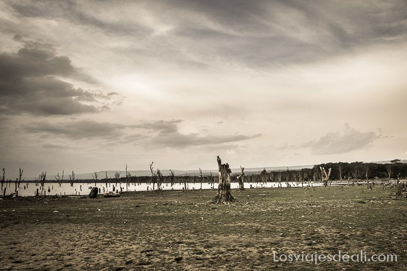 paisaje en el Lago Naivasha