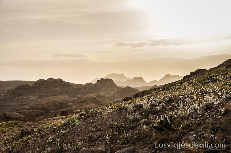 Petra paisaje al atardecer Jordania en 6 días