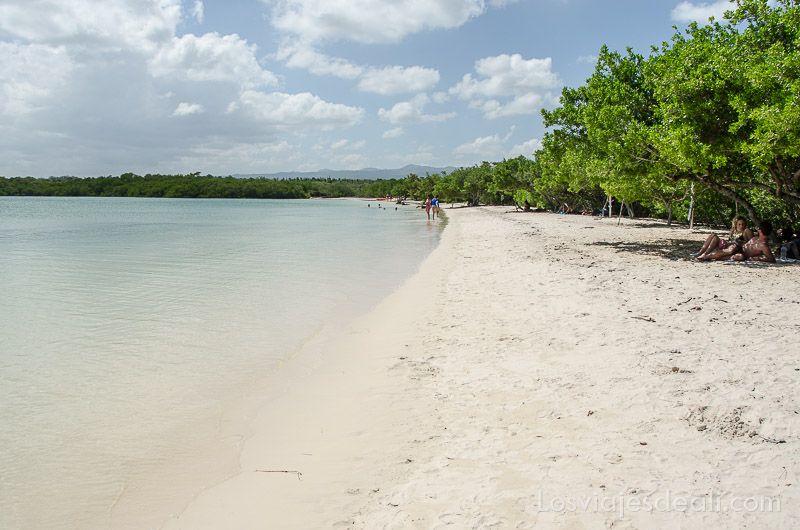 isla santa cruz playa mansa tortuga bay