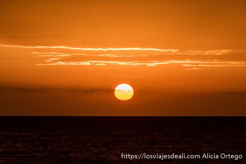 atardecer en playas de zanzíbar con el sol como una bola y el cielo todo rojo