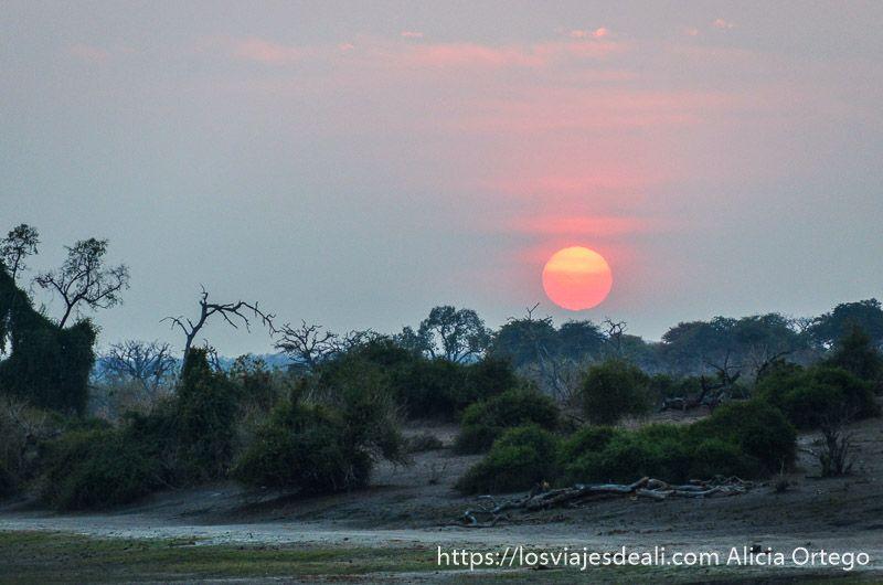 amanecer en parque nacional de chobe