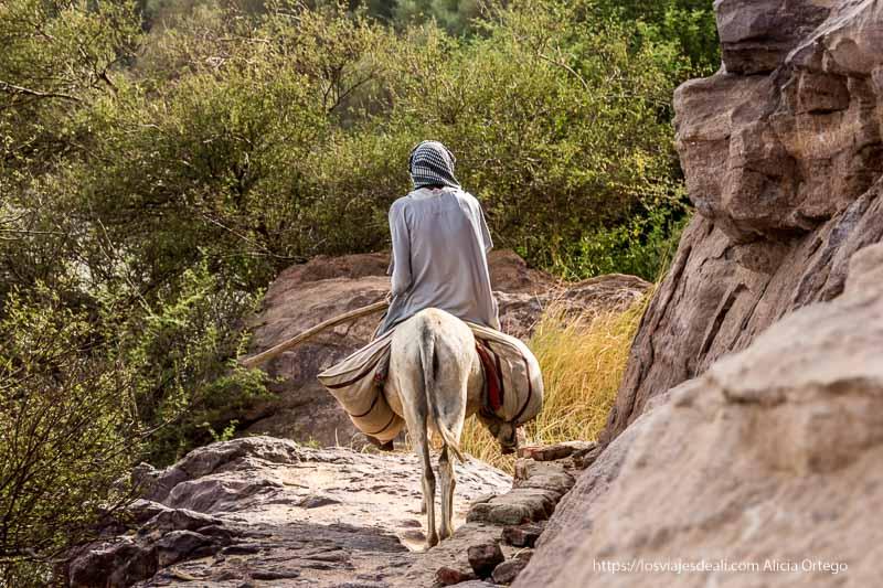 campesino montado en burro cerca del templo de soleb