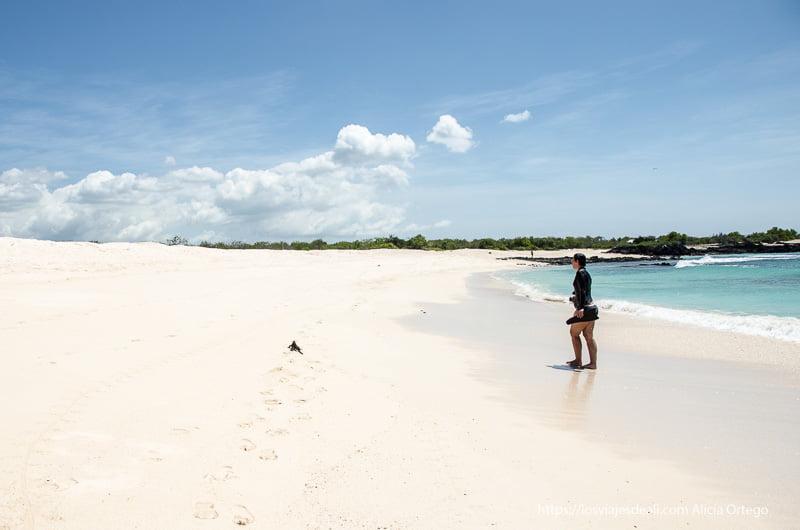 turista saliendo del agua en playas bachas con una iguana pasando delante de ella