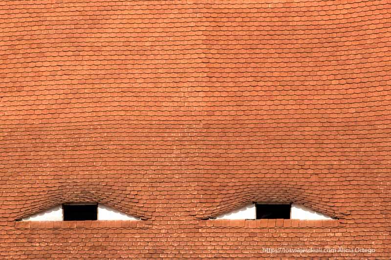 tejado de Sibiu con ventanas que parecen ojos 9 días en Rumanía