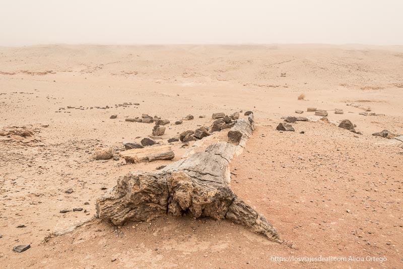 desiertos del mundo Sudán bajo gran tormenta de arena