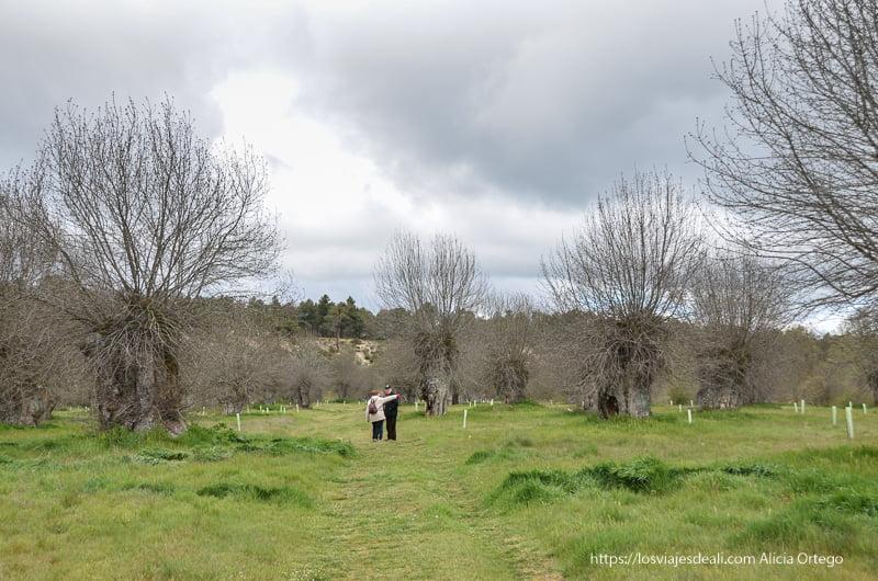 paisaje de pueblos de segovia