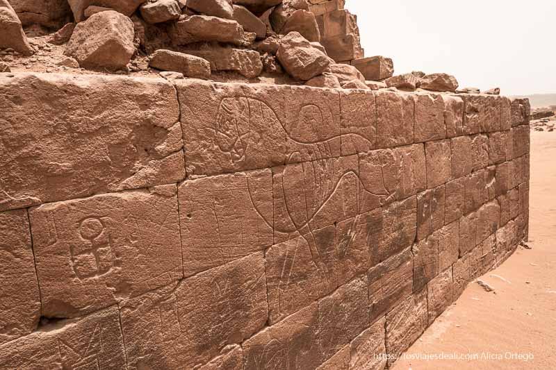 grafiti de una leona en yacimiento es suffra de meroe Sudán