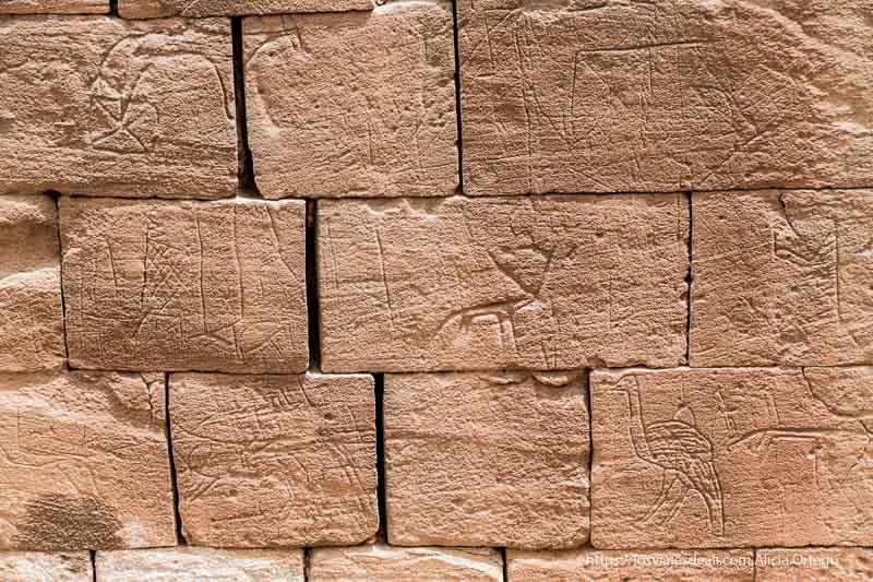 grafiti de avestruz y ciervo en muros de es suffra Sudán