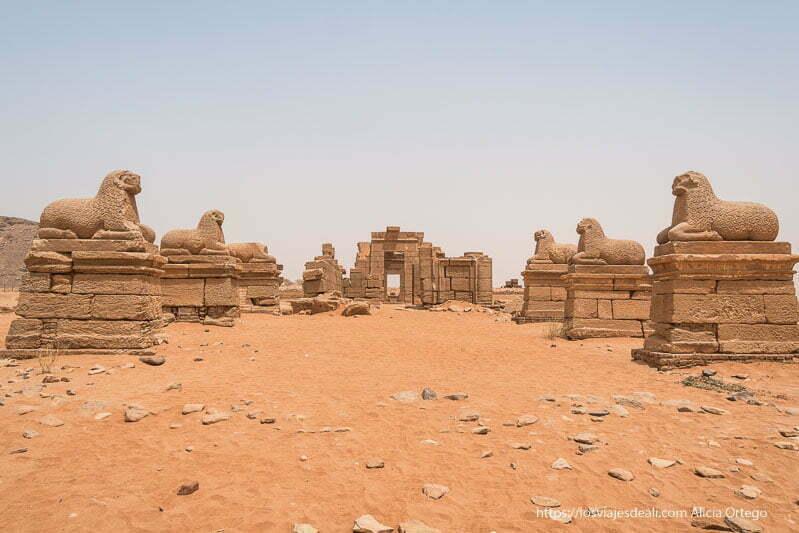 avenida de carneros para entrar el templo de amón en Naqa