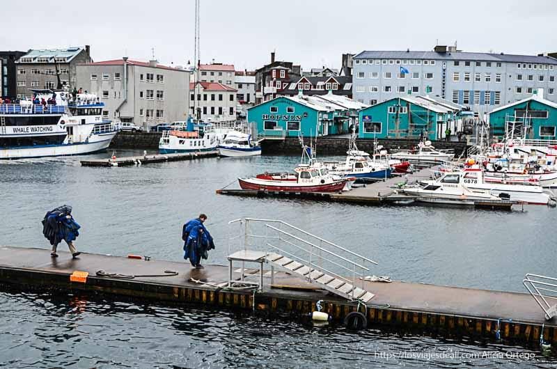 puerto de reykiavik con casetas verdes y barquitos de pesca excursión ballenas reykiavik