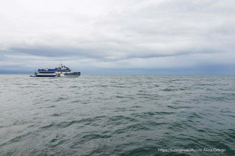 barco en el mar en la excursión buscando ballenas en islandia