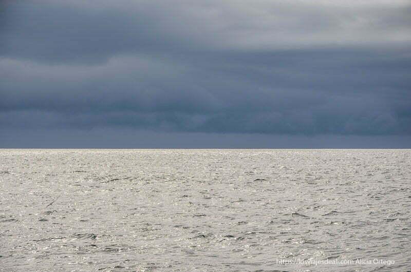 mar con nubes grises iluminado por rayos de sol en la excursión buscando ballenas en islandia