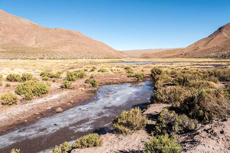 humedal de Machuca con el agua congelada