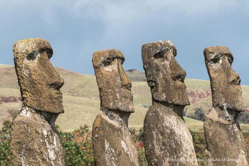 cuatro moais mirando al horizonte en isla de pascua