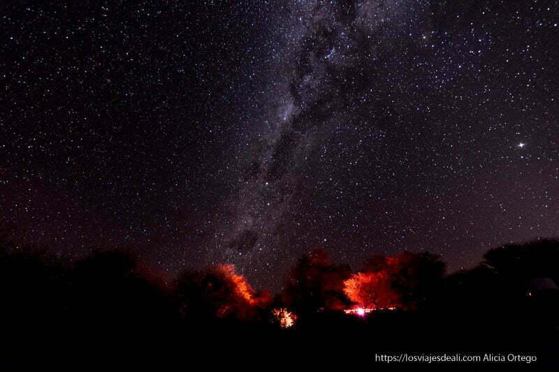 vía láctea en san pedro de atacama con árboles iluminados por luces rojas primeras impresiones de chile