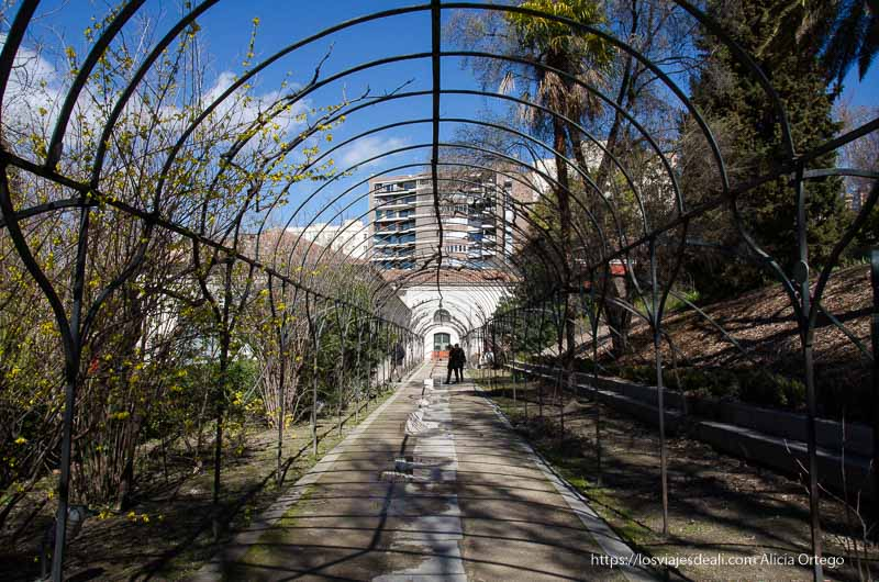 estructura de invernadero en forma de arco real Jardín Botánico de Madrid