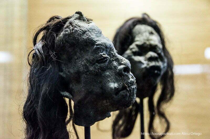 cabezas reducidas de jíbaros en museo fonk Viña del mar y valparaíso